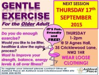 Gentle exercise for the older adult